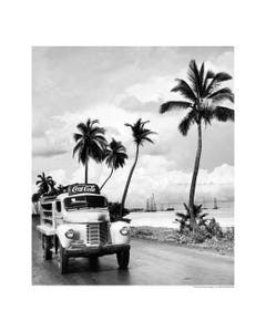 Coca-Cola Palm Tree Art Print Poster